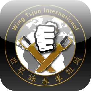 BDS Wing Tsjun International Appicon